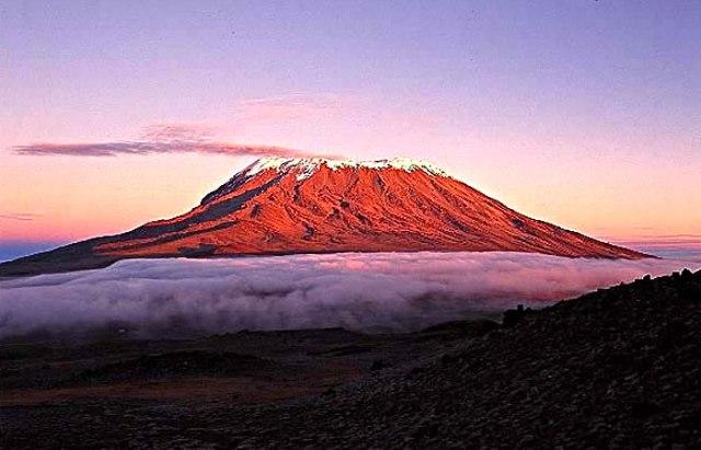 Mt Kiliminjaro Pink