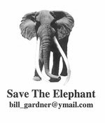 Save The Elephant