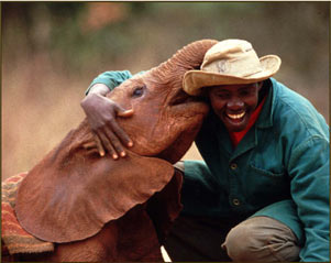 sheldricktrust_11